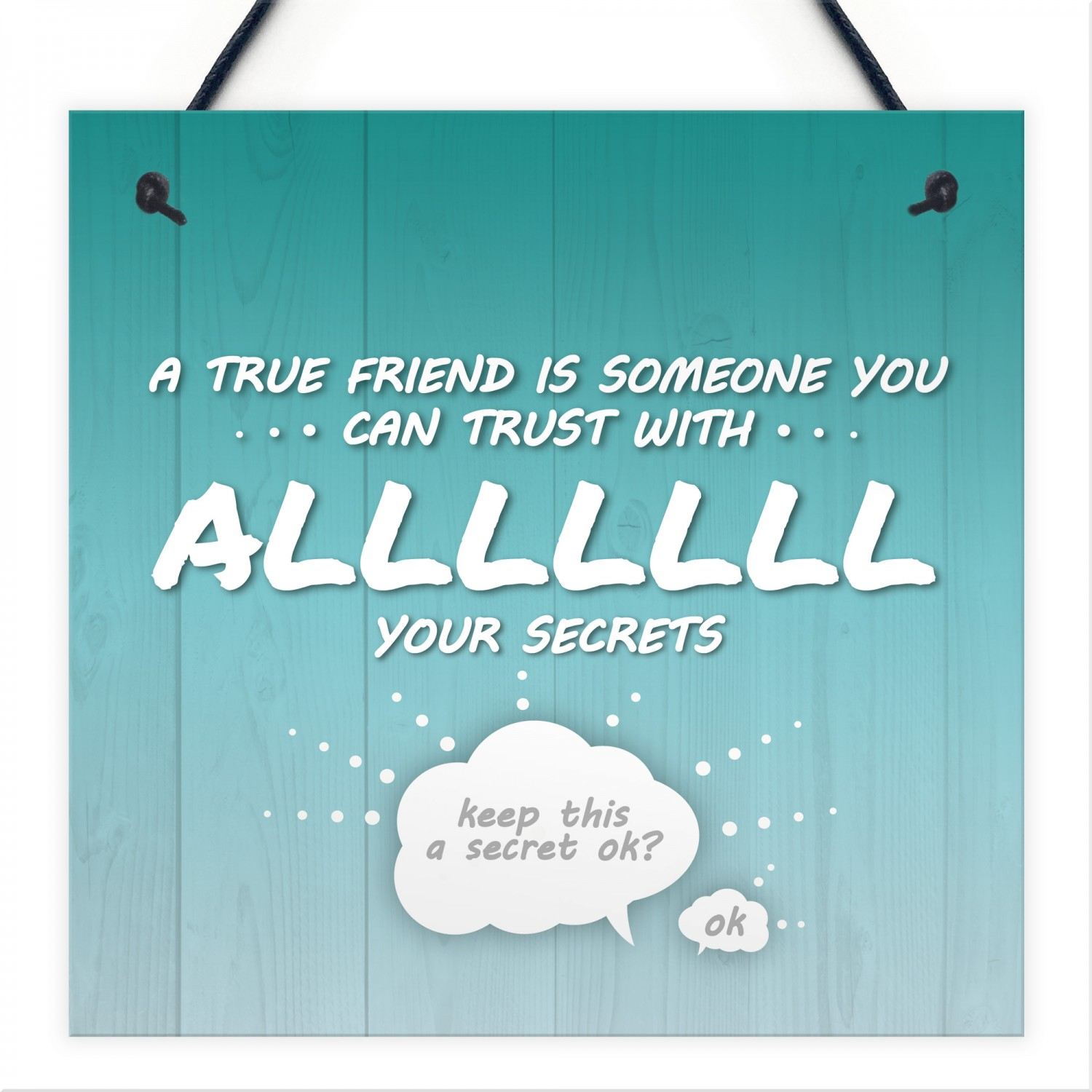 533e431fba44 Trust With All Your Secrets Hanging Plaque Friendship Sign Gifts